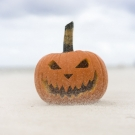 <b>A Halloween Special!</b><br>Fright Night & 2 Course Meal!