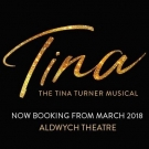 <b>TINA - The Tina Turner Musical</b><br> Evening Performance